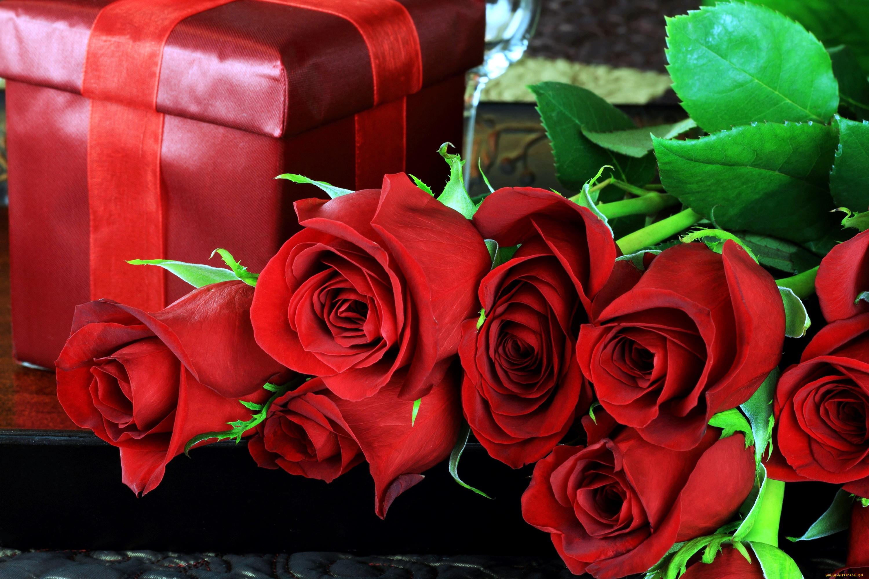 красивые открытки с розами фото соцсетях